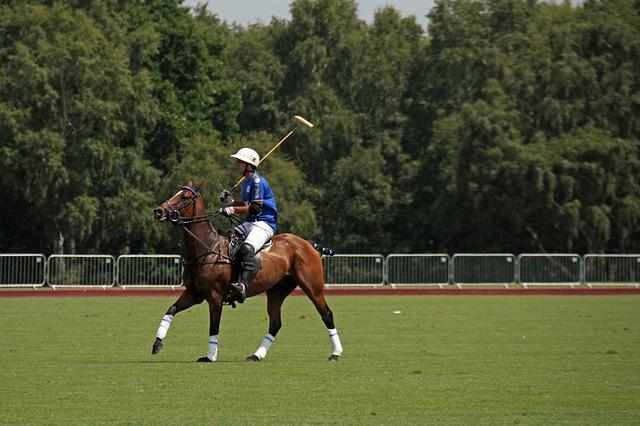 Polo's oprindelse